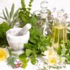 Perdere peso con le erbe officinali